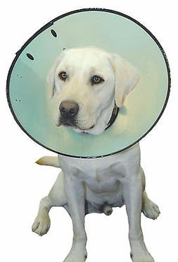 Company of Animals Smart Recovery Collar Size 5, Dog's Neck
